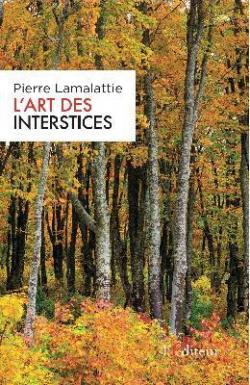 CVT_LArt-des-Interstices_3683